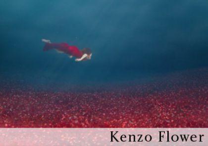 1 kenzo