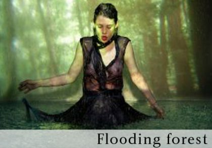 flooding forest