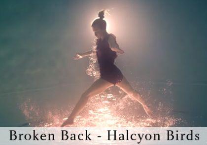 BB Halcyon